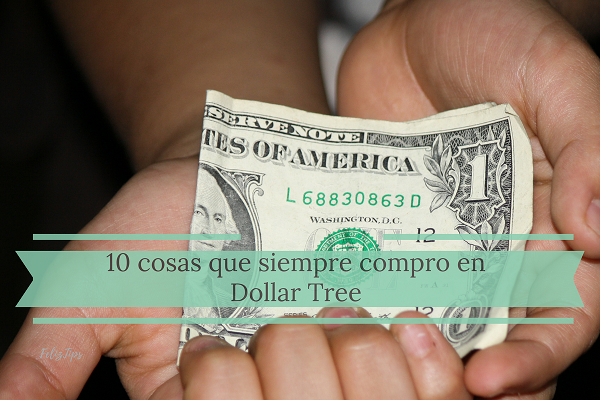 Video: 10 cosas que siempre compro en Dollar Tree (video)